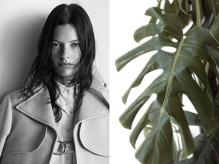 fashion, Zara, model